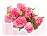 Bukett Rosa Rosor